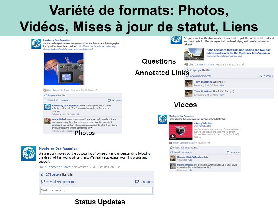 Variété de formats: Photos, Vidéos, Mises à jour de statut, Liens Photos Status Updates Videos Annotated Links Questions