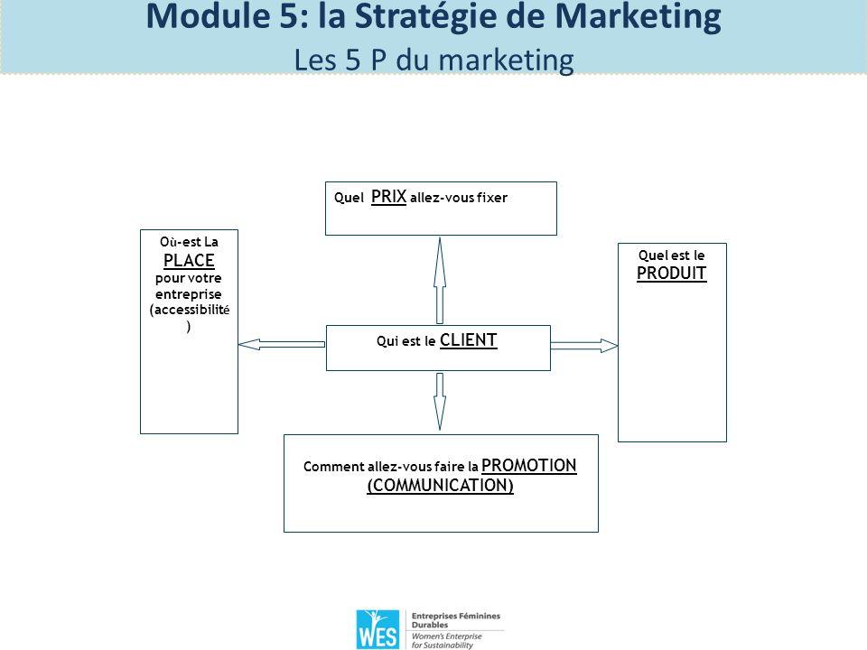 Exercice 1: Lisez l histoire 1 et 2 sur la page 47 du manuel des participantes et répondez aux questions des 5 P du marketing Module 5: la Stratégie de Marketing Les 5 P du marketing