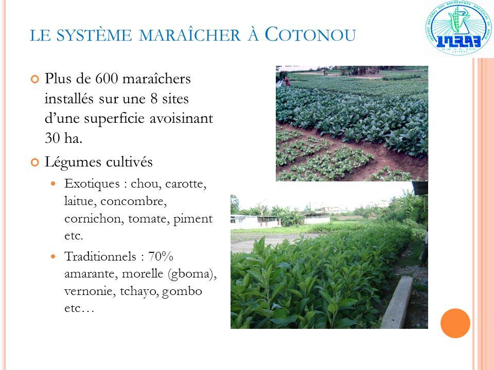 LE SYSTÈME MARAÎCHER À C OTONOU Plus de 600 maraîchers installés sur une 8 sites dune superficie avoisinant 30 ha. Légumes cultivés Exotiques : chou,