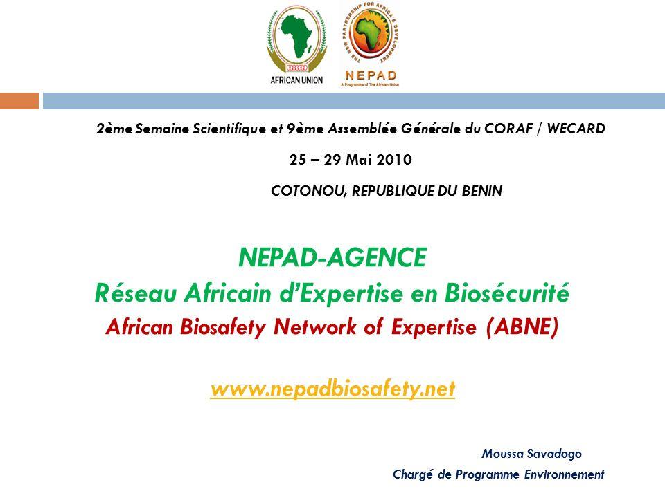 NEPAD-AGENCE Réseau Africain dExpertise en Biosécurité African Biosafety Network of Expertise (ABNE) www.nepadbiosafety.net Moussa Savadogo Chargé de