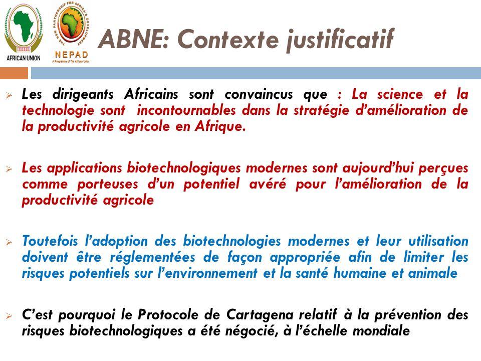 ABNE: Contexte justificatif Les dirigeants Africains sont convaincus que : La science et la technologie sont incontournables dans la stratégie damélio