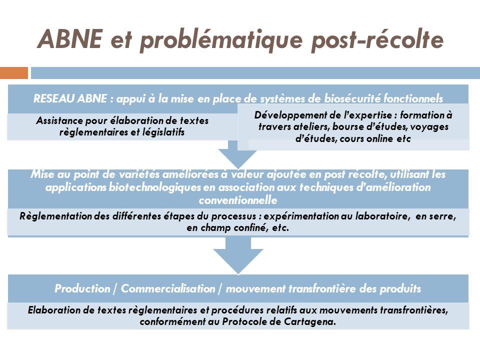ABNE et problématique post-récolte Production / Commercialisation / mouvement transfrontière des produits Elaboration de textes règlementaires et proc