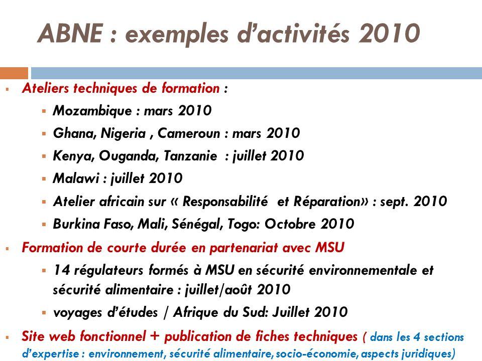 ABNE : exemples dactivités 2010 Ateliers techniques de formation : Mozambique : mars 2010 Ghana, Nigeria, Cameroun : mars 2010 Kenya, Ouganda, Tanzani