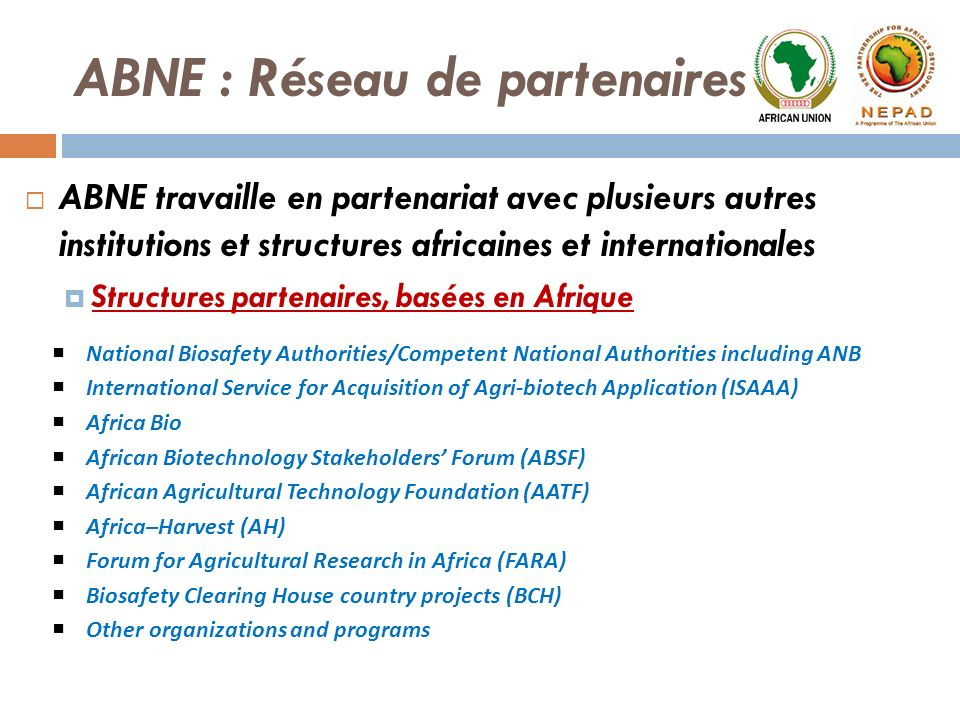ABNE travaille en partenariat avec plusieurs autres institutions et structures africaines et internationales Structures partenaires, basées en Afrique