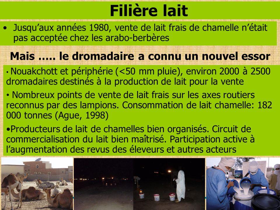 Filière lait Jusquaux années 1980, vente de lait frais de chamelle nétait pas acceptée chez les arabo-berbères Nouakchott et périphérie (<50 mm pluie)