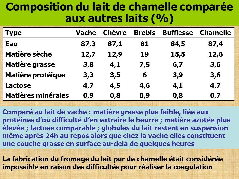 Composition du lait de chamelle comparée aux autres laits (%) TypeVacheChèvreBrebisBufflesseChamelle Eau87,387,18184,587,4 Matière sèche12,712,91915,5