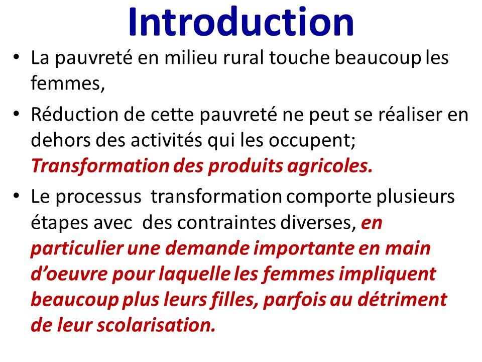 Introduction La pauvreté en milieu rural touche beaucoup les femmes, Réduction de cette pauvreté ne peut se réaliser en dehors des activités qui les occupent; Transformation des produits agricoles.
