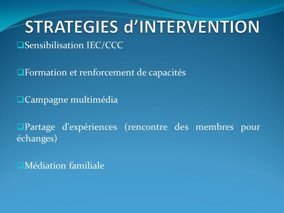 Sensibilisation IEC/CCC Formation et renforcement de capacités Campagne multimédia Partage d expériences (rencontre des membres pour échanges) Médiation familiale