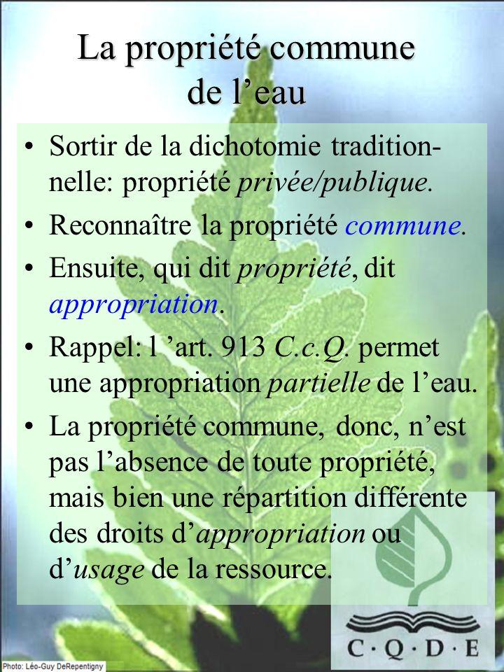 La propriété commune de leau Sortir de la dichotomie tradition- nelle: propriété privée/publique. Reconnaître la propriété commune. Ensuite, qui dit p