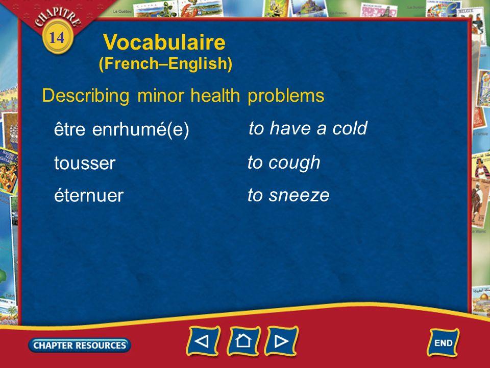 14 a handkerchief Describing minor health problems un mouchoir un kleenex se sentir bien a tissue to feel well mal sick Vocabulaire (French–English)