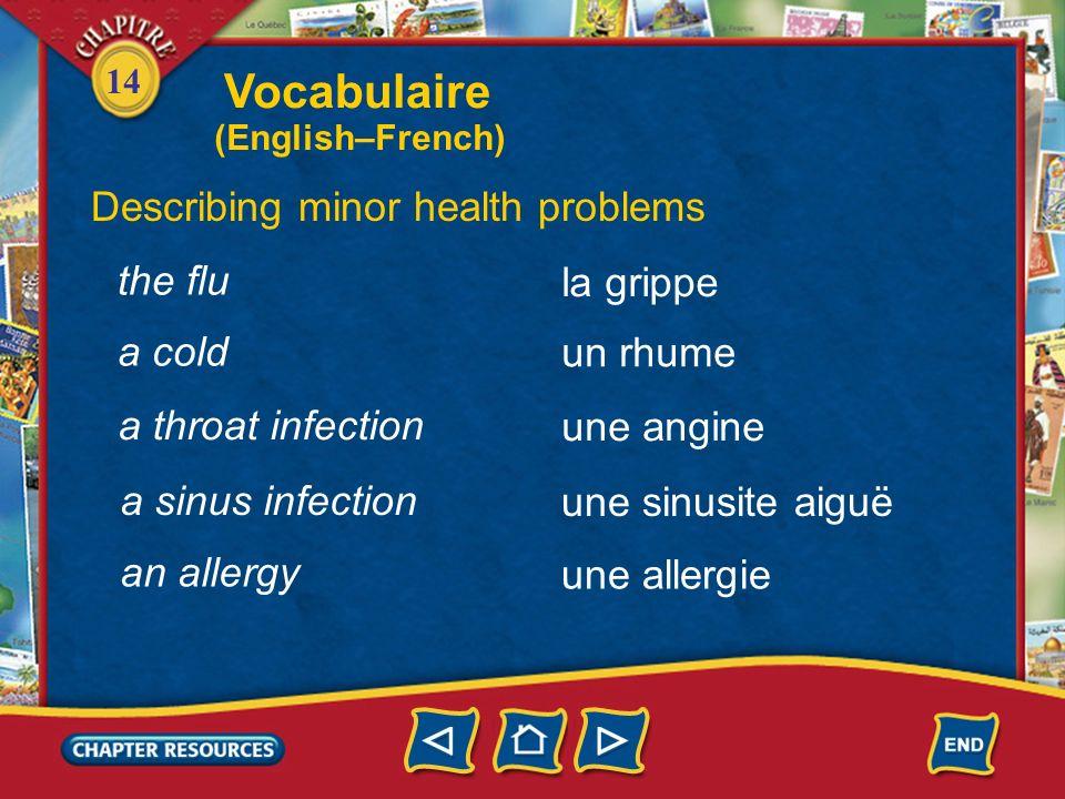 14 health Vocabulaire Describing minor health problems la santé en bonne santé en mauvaise santé in good health in poor health une infection an infect