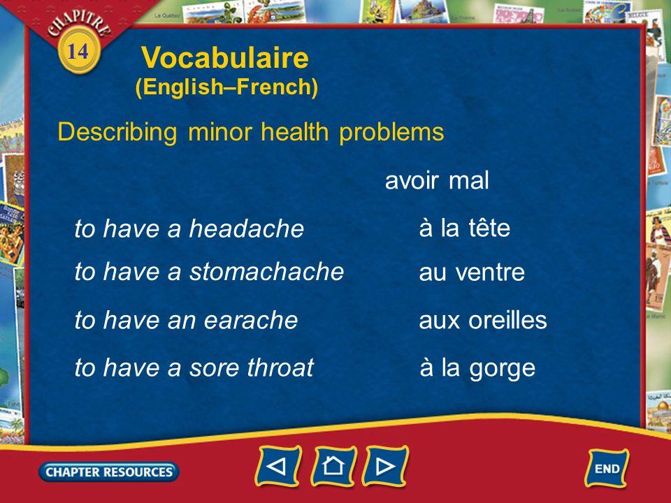 14 to cough Describing minor health problems tousser éternuer to sneeze être enrhumé(e) to have a cold Vocabulaire (English–French)
