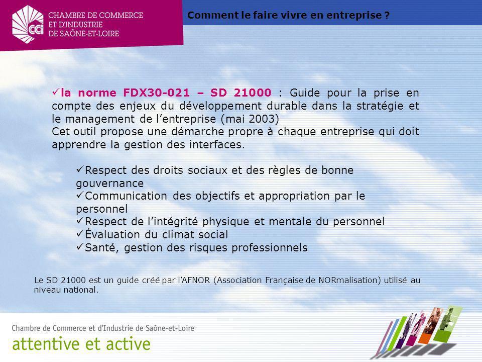 Comment le faire vivre en entreprise ? la norme FDX30-021 – SD 21000 : Guide pour la prise en compte des enjeux du développement durable dans la strat