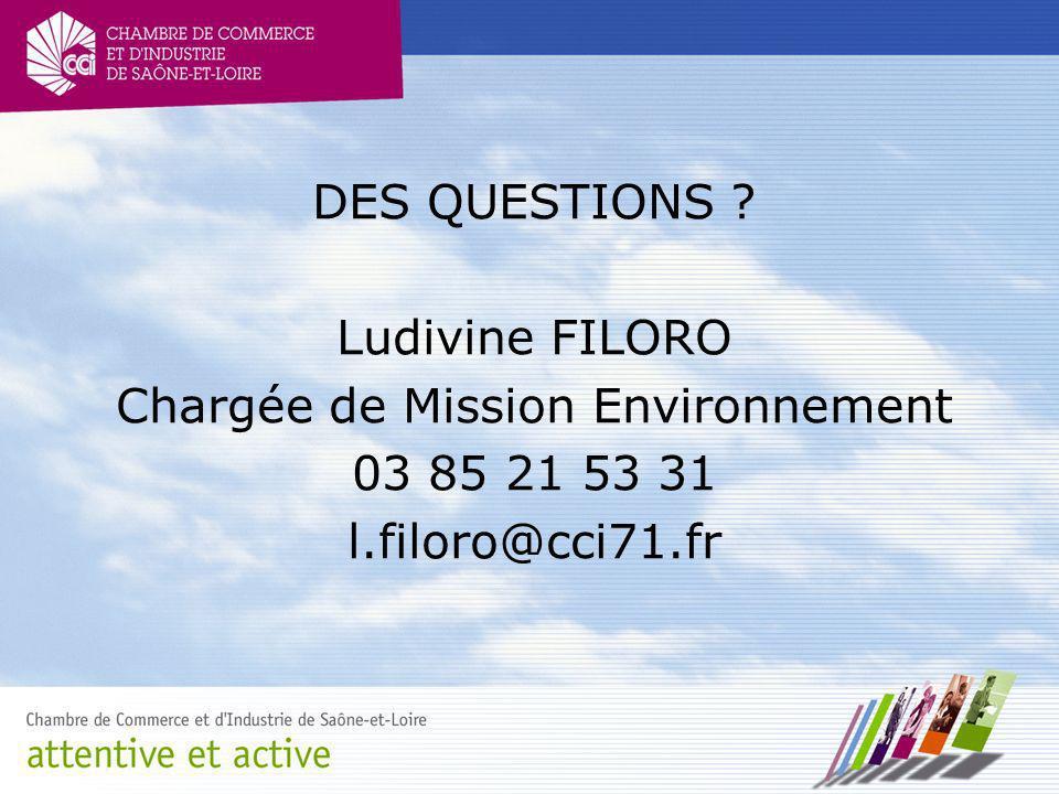 DES QUESTIONS ? Ludivine FILORO Chargée de Mission Environnement 03 85 21 53 31 l.filoro@cci71.fr