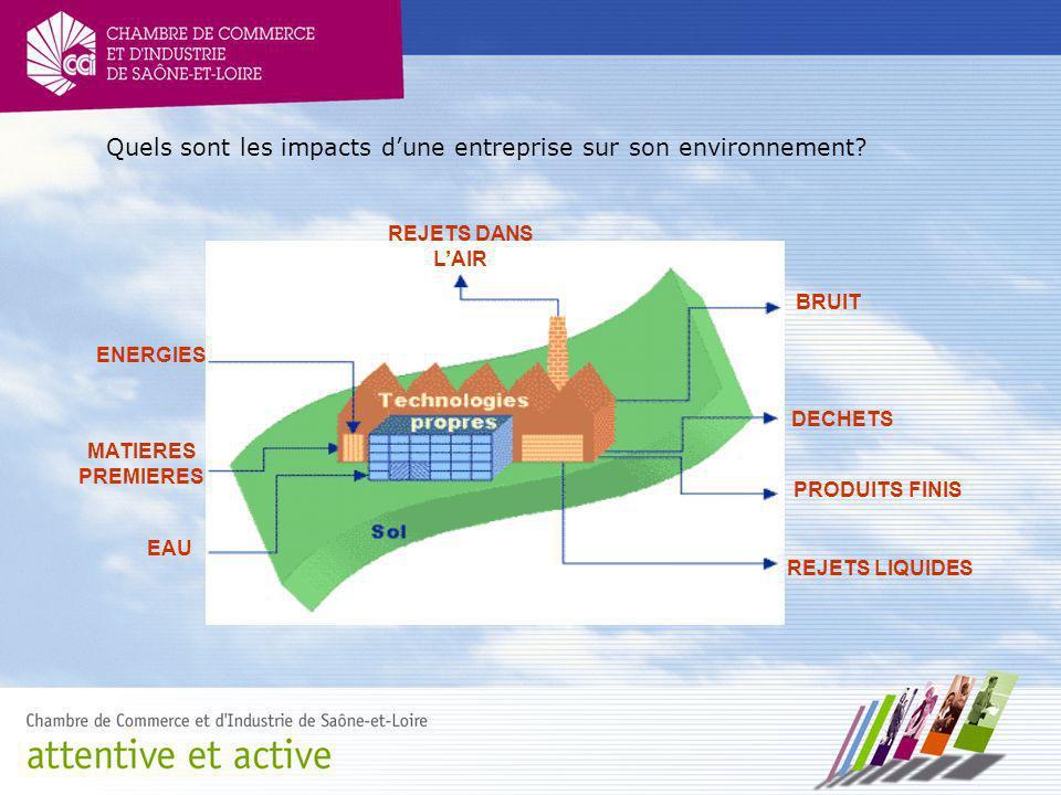 Quels sont les impacts dune entreprise sur son environnement? ENERGIES MATIERES PREMIERES EAU REJETS DANS LAIR BRUIT DECHETS PRODUITS FINIS REJETS LIQ