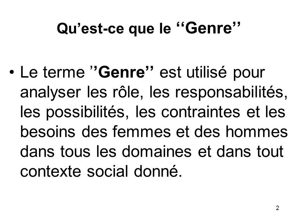2 Quest-ce que le Genre Le terme Genre est utilisé pour analyser les rôle, les responsabilités, les possibilités, les contraintes et les besoins des femmes et des hommes dans tous les domaines et dans tout contexte social donné.