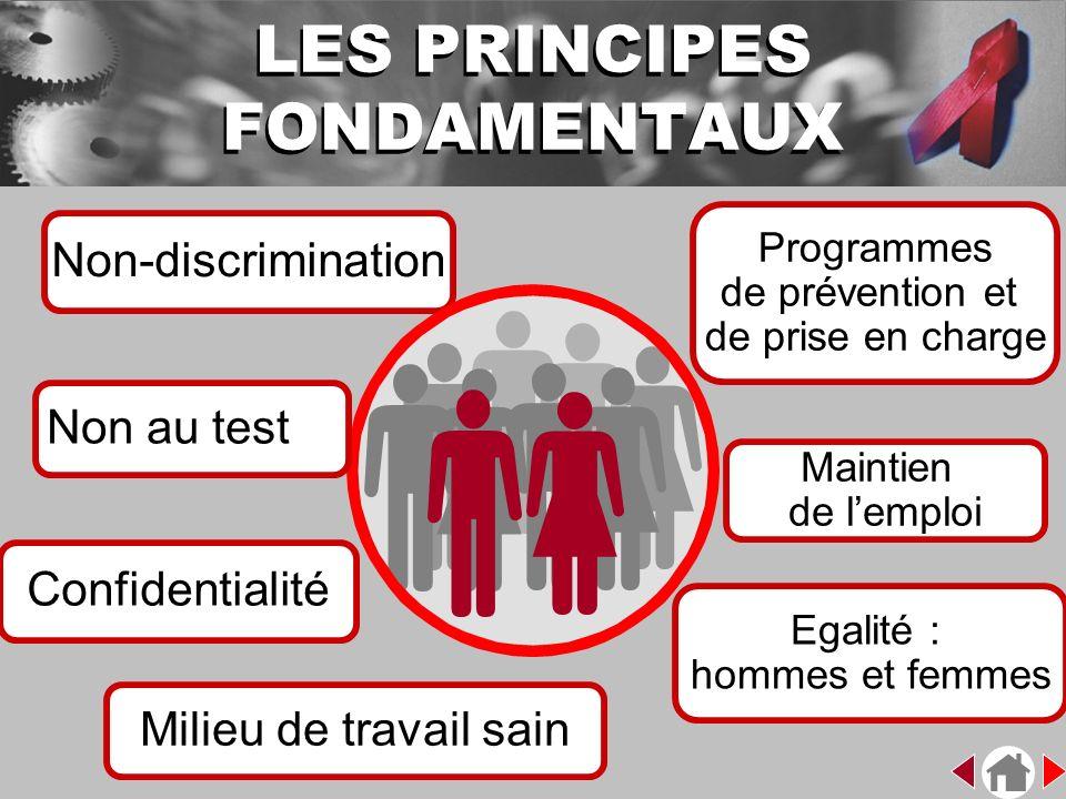 Non-discrimination Confidentialité Programmes de prévention et de prise en charge Egalité : hommes et femmes Non au test Maintien de lemploi LES PRINC