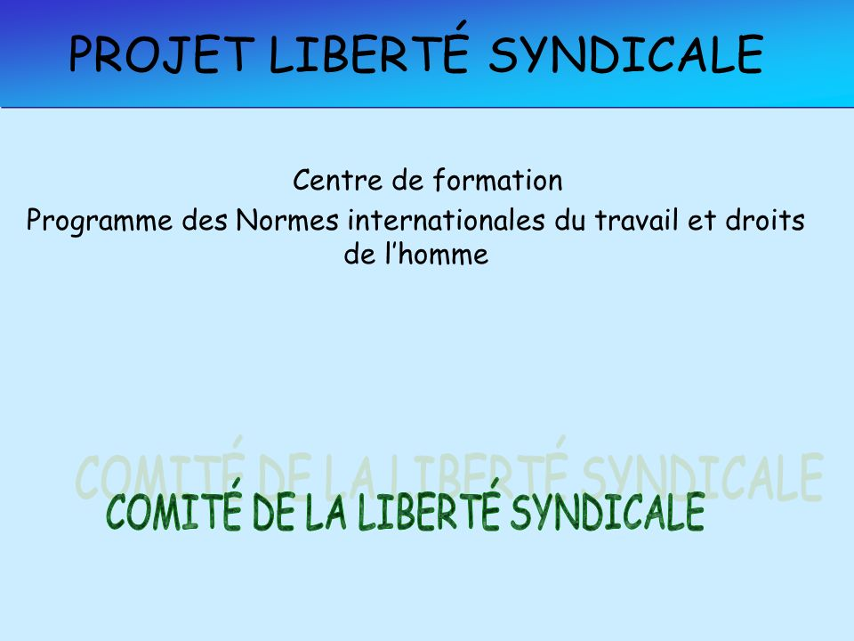 PROJET LIBERTÉ SYNDICALE Centre de formation Programme des Normes internationales du travail et droits de lhomme