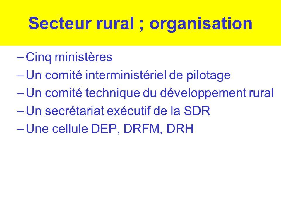Secteur rural ; organisation –Cinq ministères –Un comité interministériel de pilotage –Un comité technique du développement rural –Un secrétariat exéc