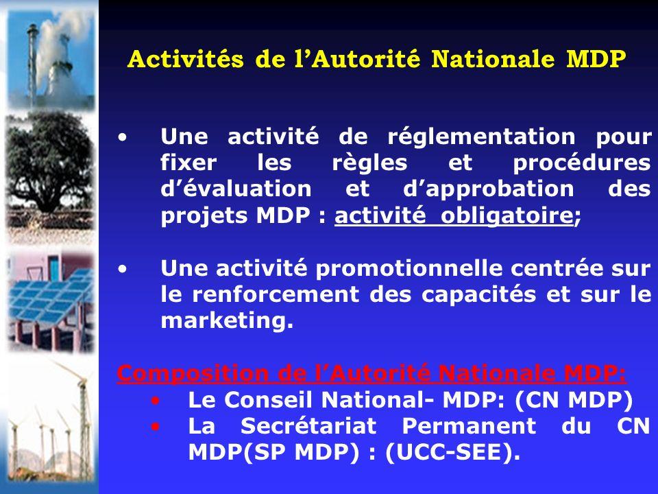Une activité de réglementation pour fixer les règles et procédures dévaluation et dapprobation des projets MDP : activité obligatoire; Une activité promotionnelle centrée sur le renforcement des capacités et sur le marketing.