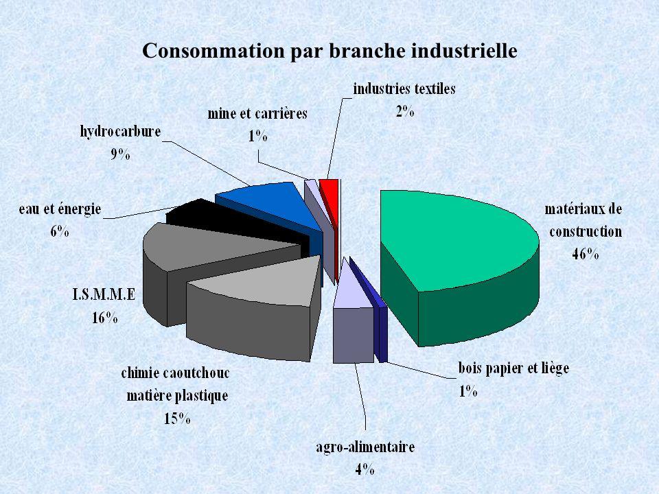 Consommation par branche industrielle
