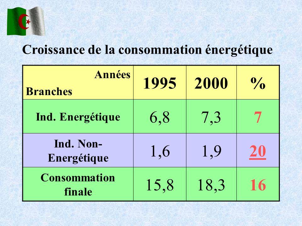 Années Branches 19952000% Ind. Energétique 6,87,37 Ind. Non- Energétique 1,61,920 Consommation finale 15,818,316 Croissance de la consommation énergét