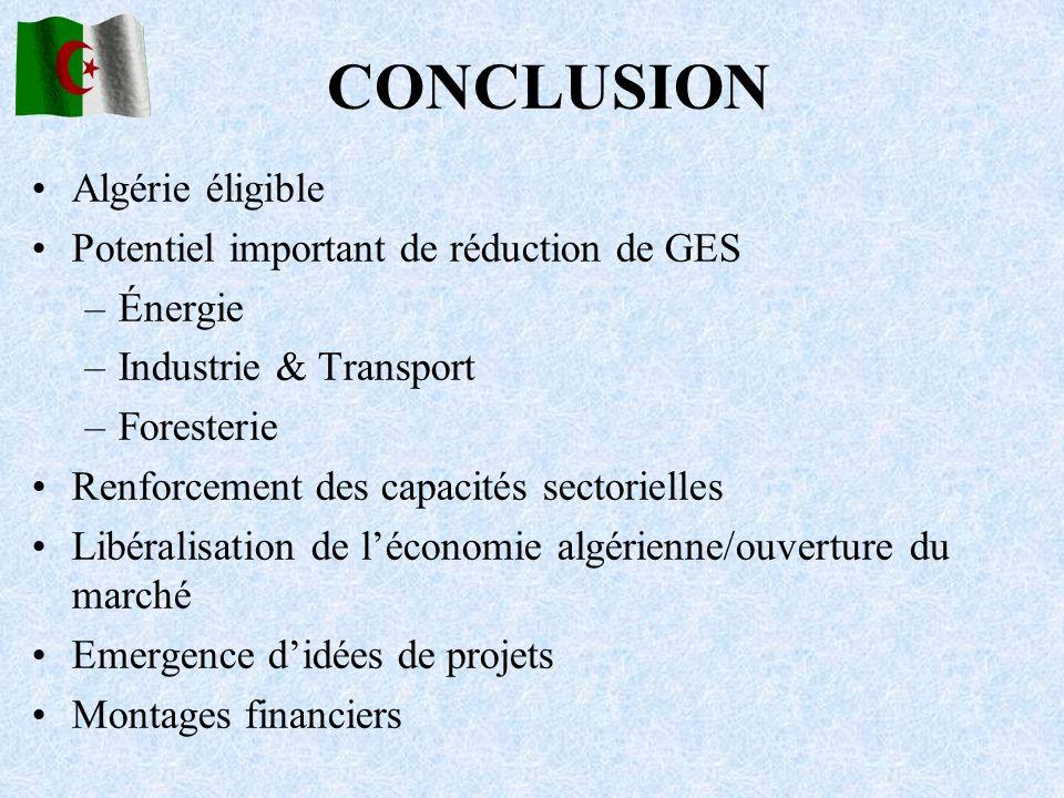 CONCLUSION Algérie éligible Potentiel important de réduction de GES –Énergie –Industrie & Transport –Foresterie Renforcement des capacités sectorielle