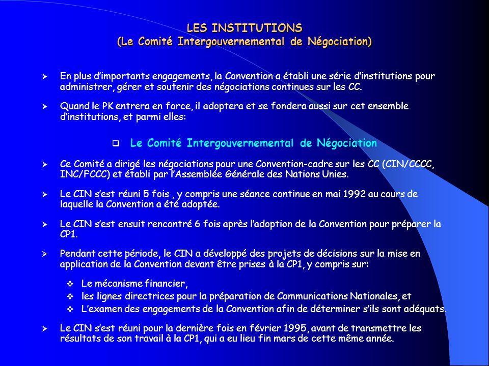 LES INSTITUTIONS (Le Comité Intergouvernemental de Négociation) En plus dimportants engagements, la Convention a établi une série dinstitutions pour a