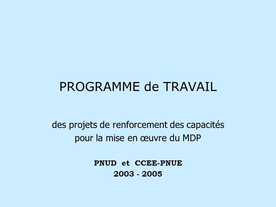 PROGRAMME de TRAVAIL des projets de renforcement des capacités pour la mise en œuvre du MDP PNUD et CCEE-PNUE 2003 - 2005