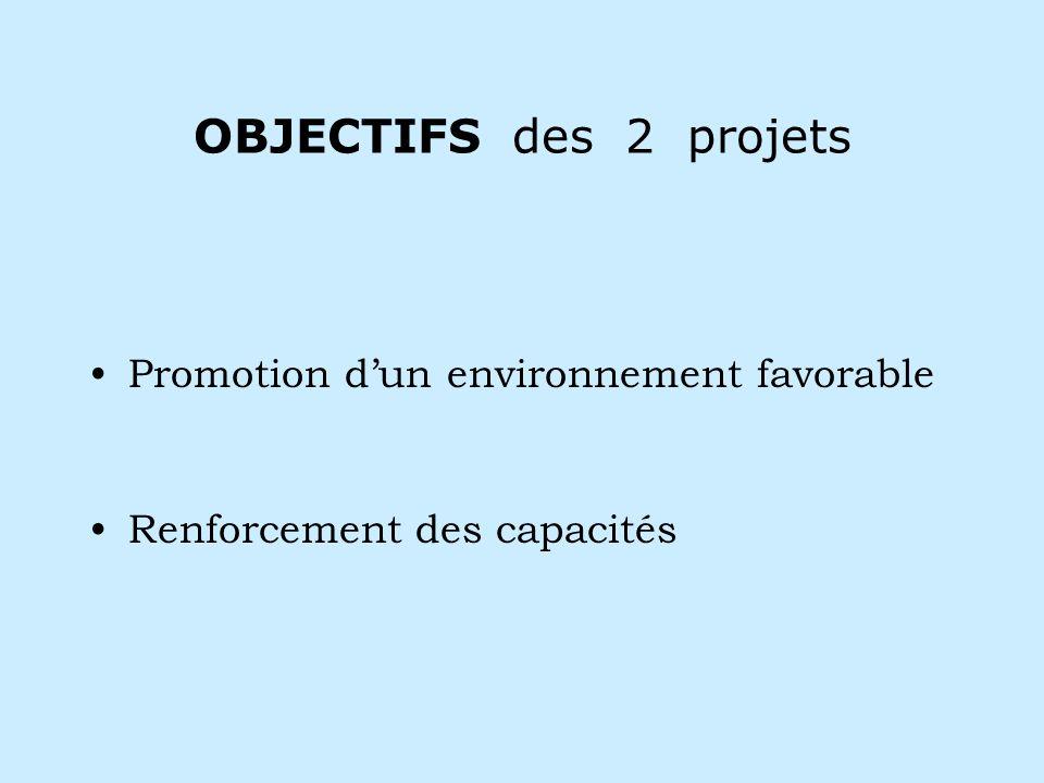OBJECTIFS des 2 projets Promotion dun environnement favorable Renforcement des capacités