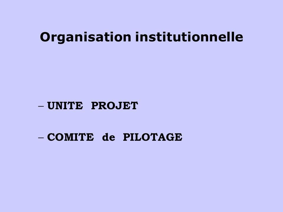 Organisation institutionnelle – UNITE PROJET – COMITE de PILOTAGE