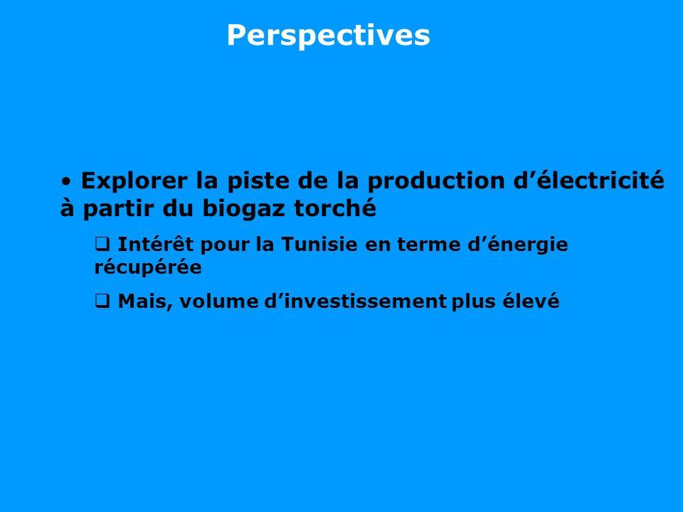 Explorer la piste de la production délectricité à partir du biogaz torché Intérêt pour la Tunisie en terme dénergie récupérée Mais, volume dinvestisse