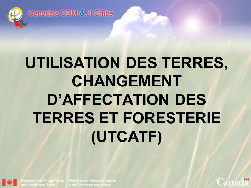 UTILISATION DES TERRES, CHANGEMENT DAFFECTATION DES TERRES ET FORESTERIE (UTCATF)