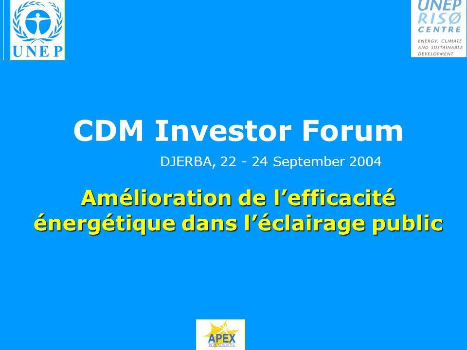 Amélioration de lefficacité énergétique dans léclairage public CDM Investor Forum DJERBA, 22 - 24 September 2004