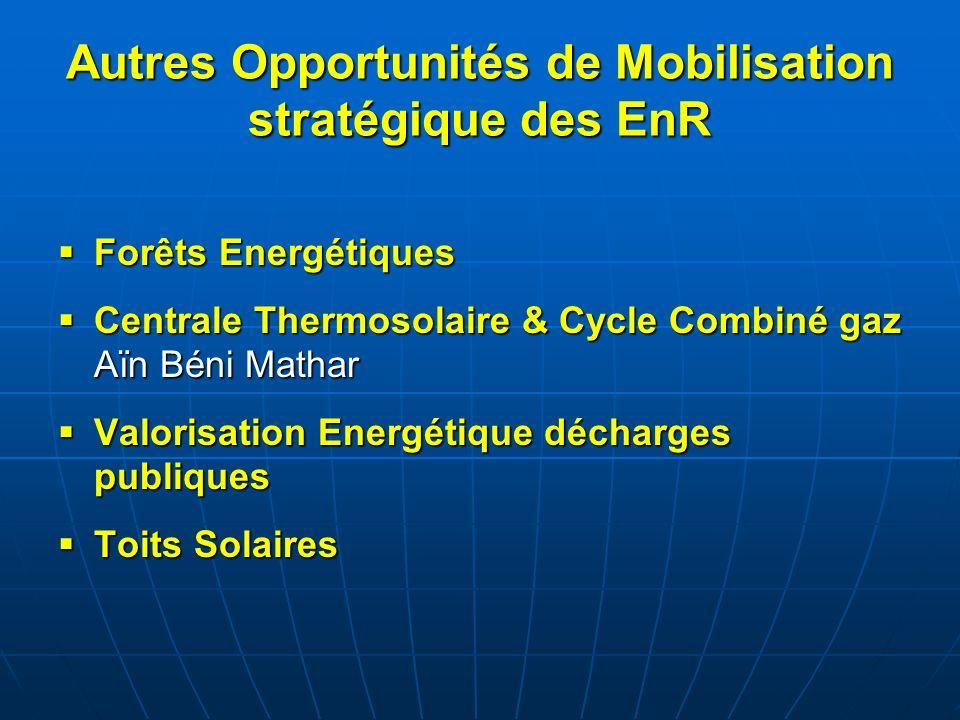Autres Opportunités de Mobilisation stratégique des EnR Forêts Energétiques Forêts Energétiques Centrale Thermosolaire & Cycle Combiné gaz Aïn Béni Ma