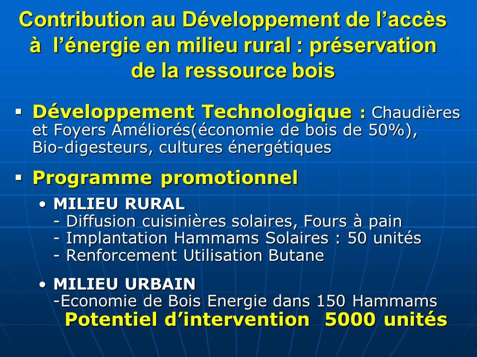 Contribution au Développement de laccès à lénergie en milieu rural : préservation de la ressource bois Développement Technologique : Chaudières et Foy