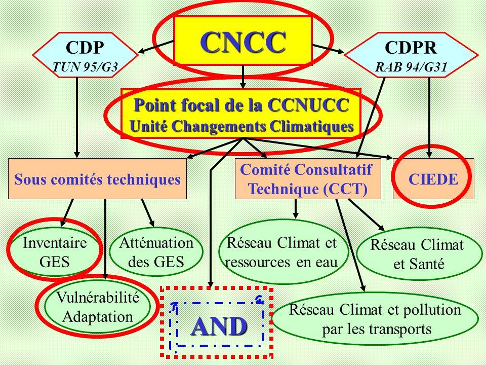 CNCC Point focal de la CCNUCC Unité Changements Climatiques Sous comités techniques Comité Consultatif Technique (CCT) CIEDE Inventaire GES Atténuation des GES Vulnérabilité Adaptation Réseau Climat et ressources en eau Réseau Climat et Santé Réseau Climat et pollution par les transports AND CDP TUN 95/G3 CDPR RAB 94/G31