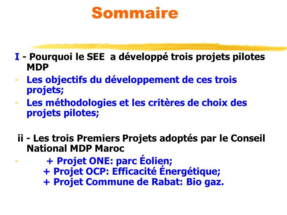 Sommaire I - Pourquoi le SEE a développé trois projets pilotes MDP -Les objectifs du développement de ces trois projets; -Les méthodologies et les cri