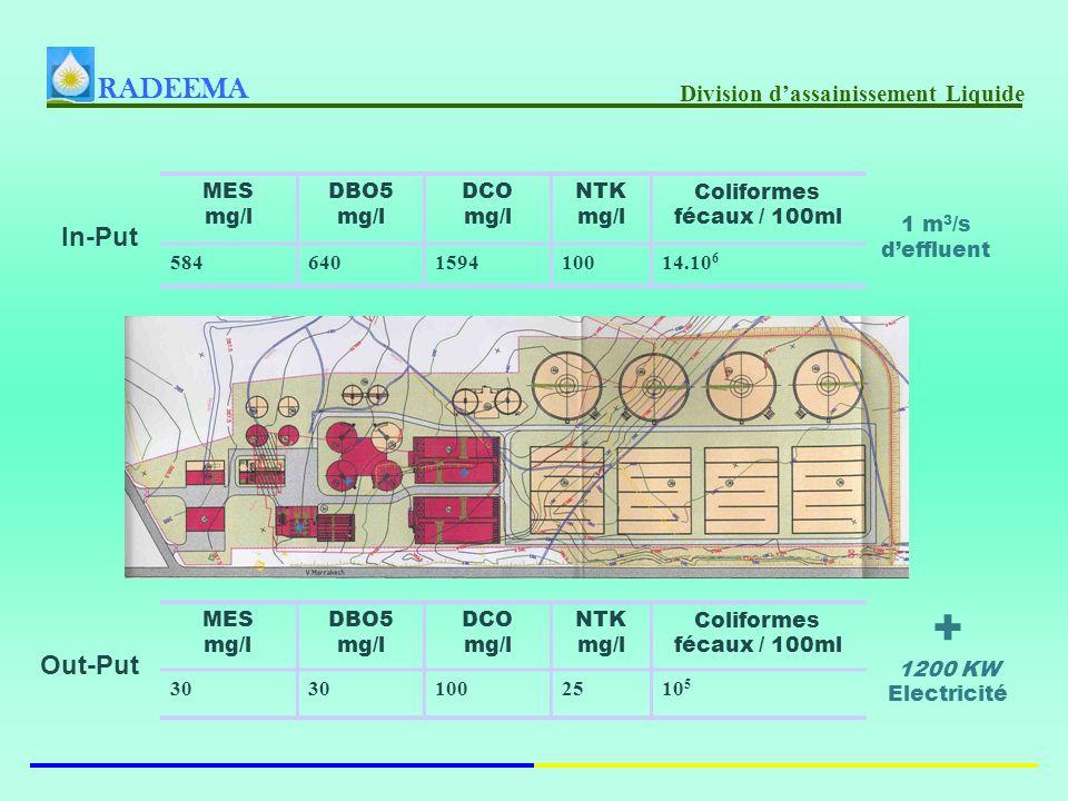 RADEEMA Division dassainissement Liquide Coliformes fécaux / 100ml NTK mg/l DCO mg/l DBO5 mg/l MES mg/l 14.10 6 1001594640584 Coliformes fécaux / 100ml NTK mg/l DCO mg/l DBO5 mg/l MES mg/l 10 5 2510030 In-Put Out-Put + 1200 KW Electricité 1 m 3 /s deffluent