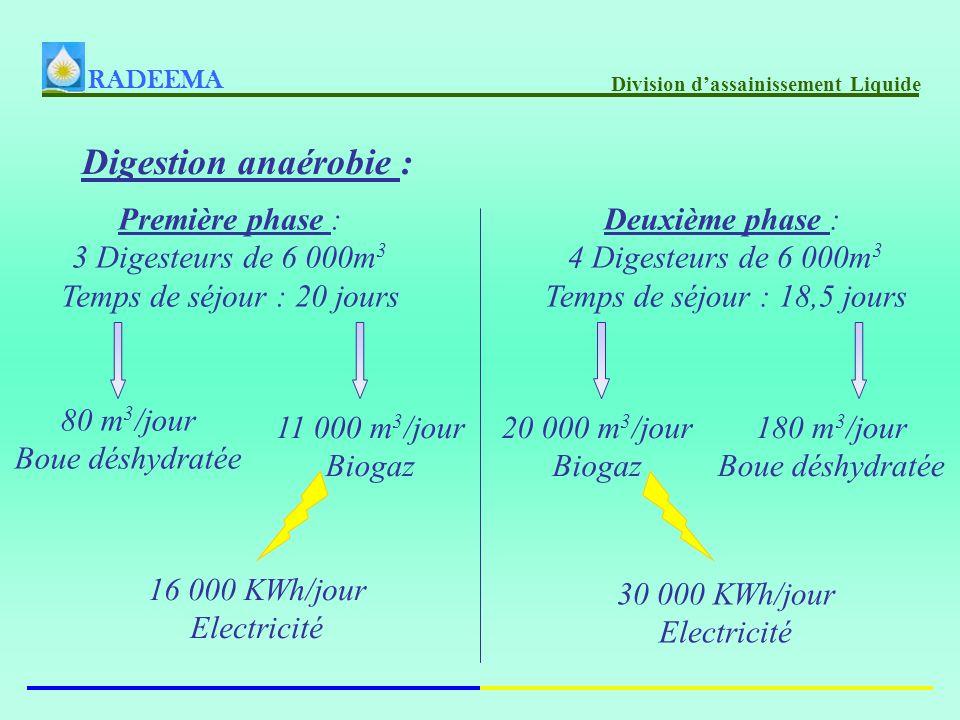Digestion anaérobie : Première phase : 3 Digesteurs de 6 000m 3 Temps de séjour : 20 jours Deuxième phase : 4 Digesteurs de 6 000m 3 Temps de séjour : 18,5 jours 80 m 3 /jour Boue déshydratée 11 000 m 3 /jour Biogaz 16 000 KWh/jour Electricité 180 m 3 /jour Boue déshydratée 20 000 m 3 /jour Biogaz 30 000 KWh/jour Electricité RADEEMA Division dassainissement Liquide