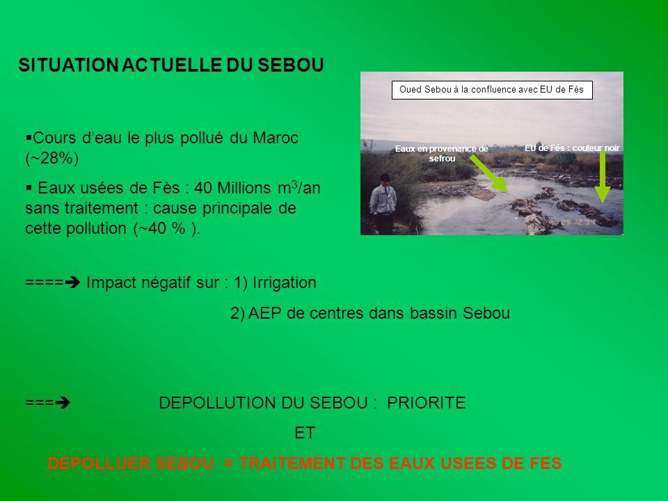 SITUATION ACTUELLE DU SEBOU Cours deau le plus pollué du Maroc (~28%) Eaux usées de Fès : 40 Millions m 3 /an sans traitement : cause principale de ce