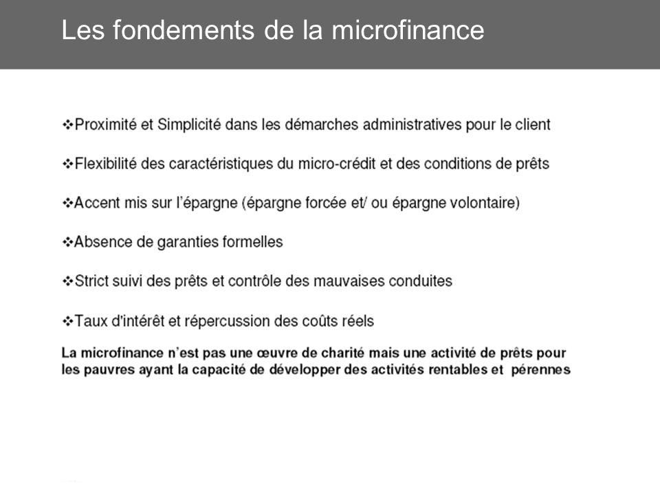 Les fondements de la microfinance