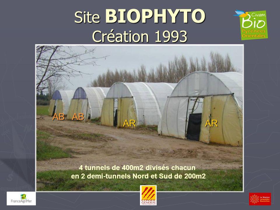 Site BIOPHYTO Création 1993 AB AB AR AR 4 tunnels de 400m2 divisés chacun en 2 demi-tunnels Nord et Sud de 200m2