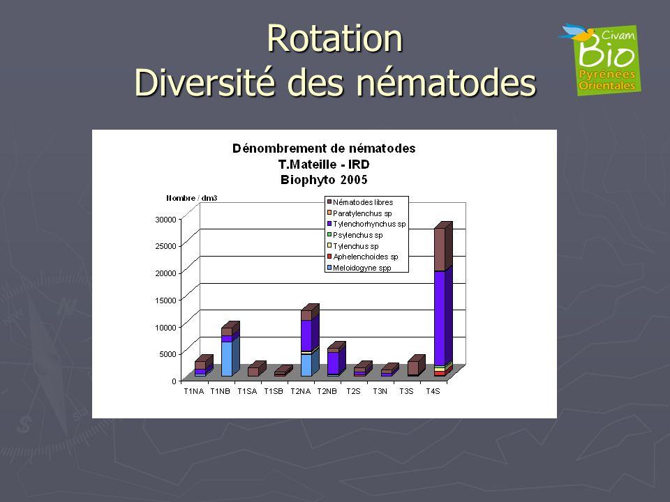 Rotation Diversité des nématodes