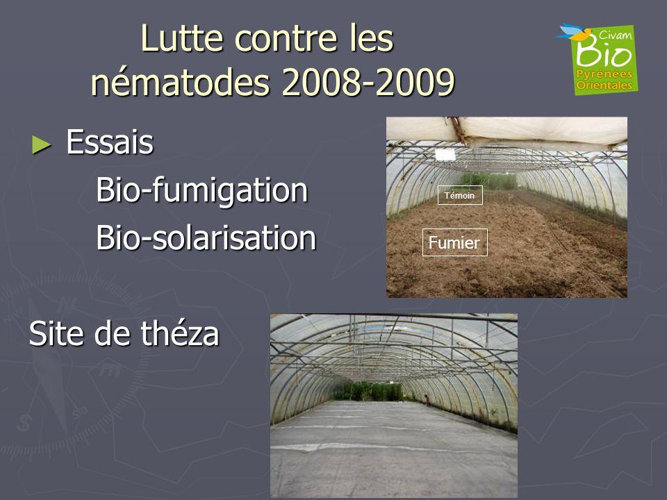 Lutte contre les nématodes 2008-2009 Essais EssaisBio-fumigationBio-solarisation Site de théza Fumier Témoin