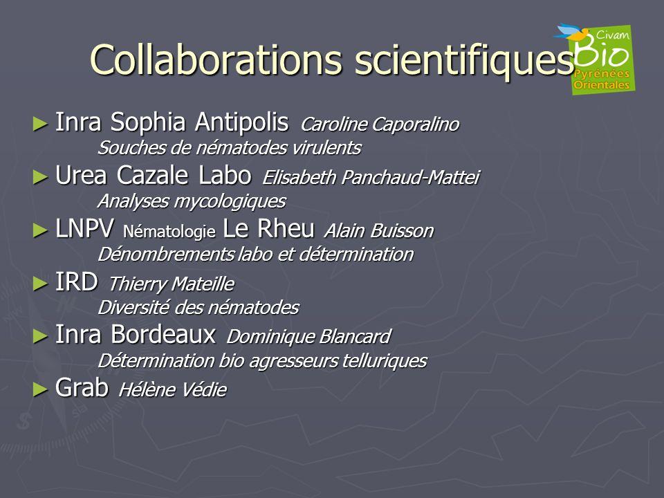 Collaborations scientifiques Inra Sophia Antipolis Caroline Caporalino Inra Sophia Antipolis Caroline Caporalino Souches de nématodes virulents Urea C
