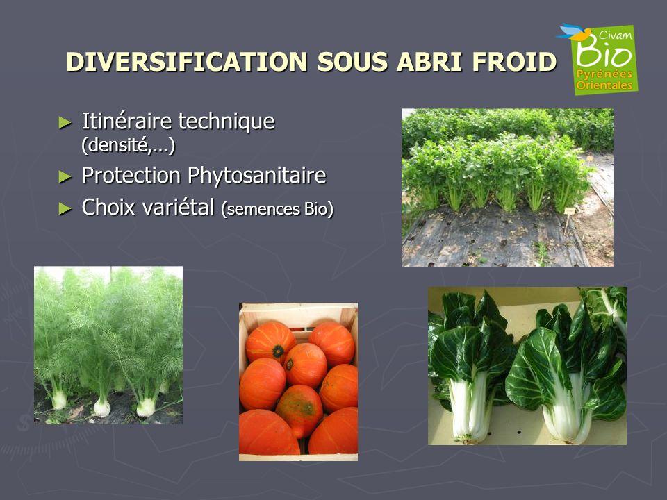 DIVERSIFICATION SOUS ABRI FROID Itinéraire technique (densité,…) Itinéraire technique (densité,…) Protection Phytosanitaire Protection Phytosanitaire