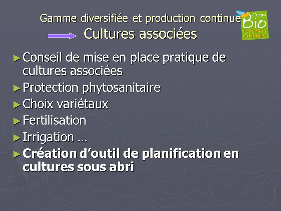 Gamme diversifiée et production continue Cultures associées Conseil de mise en place pratique de cultures associées Conseil de mise en place pratique