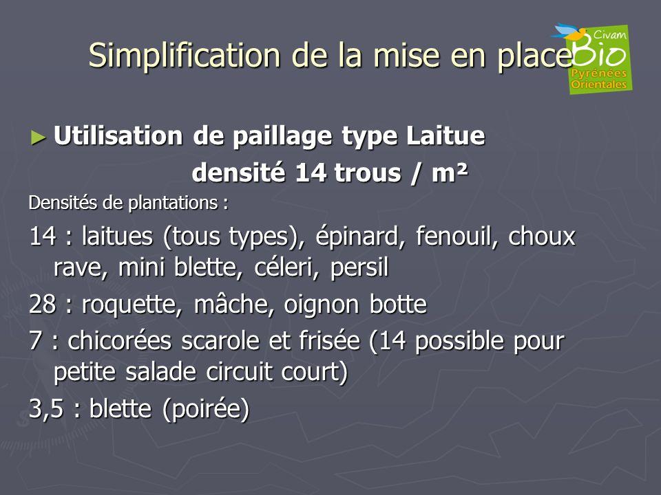 Simplification de la mise en place Utilisation de paillage type Laitue Utilisation de paillage type Laitue densité 14 trous / m² Densités de plantatio