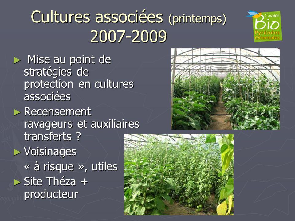 Cultures associées (printemps) 2007-2009 Mise au point de stratégies de protection en cultures associées Mise au point de stratégies de protection en